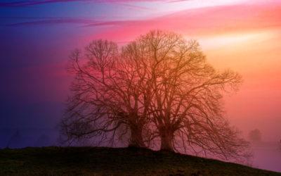 COLORselect: 3 Lichtfarben – 1 Leuchte